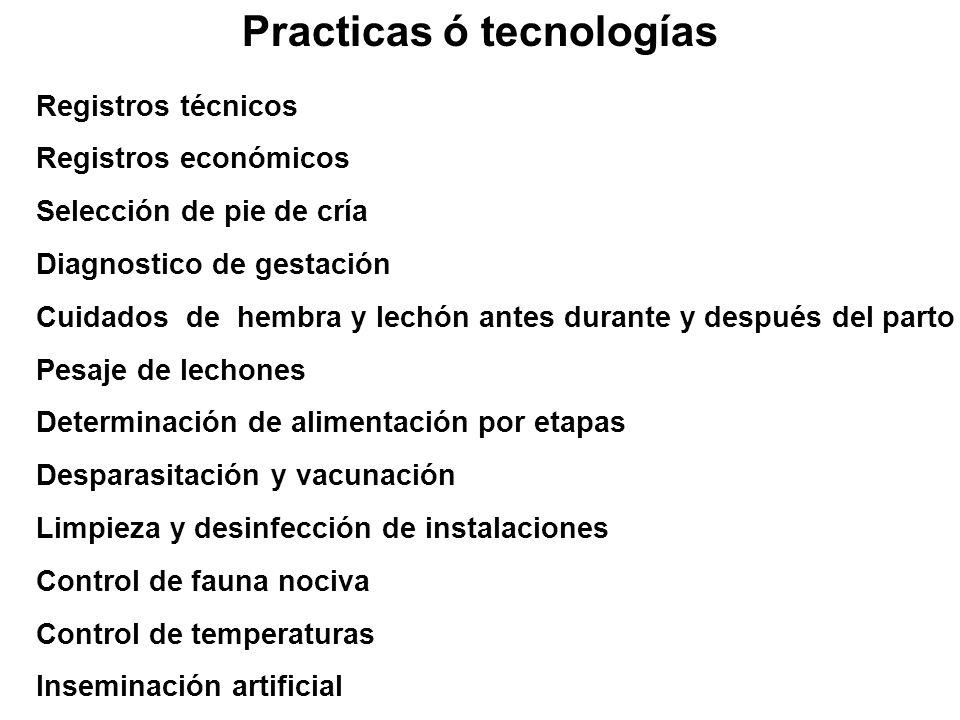 Practicas ó tecnologías Registros técnicos Registros económicos Selección de pie de cría Diagnostico de gestación Cuidados de hembra y lechón antes du