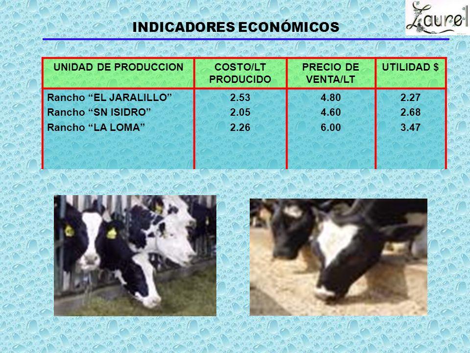 Leche 99.2 99.7 97.5 Becerros 0.8 0.3 2.5 Vaquillas 0.0 0.0 0.0 TOTAL 100 100 100 INGRESOS POR PRODUCTOS 1 731 557.25 220 966.00 222 907.60 CONCEPTO %