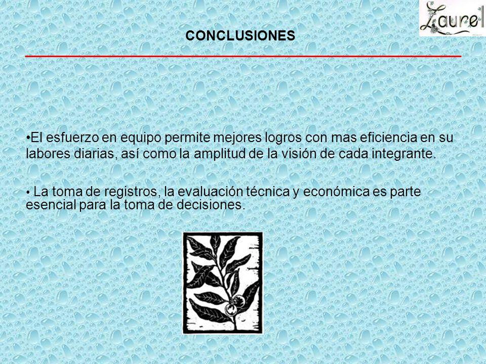 METAS DEL GRUPO GGAVATT MEDIANO PLAZO 6 MESES Llevar a las becerras de recría a parámetros ideales para la producción y reproducción Aumentar el numer