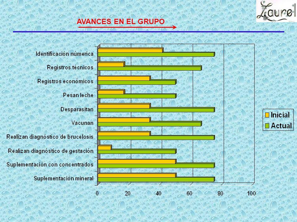 I. Referencias Fecha de inicio Fecha de constitución Productores actuales Grado de escolaridad promedio Edad promedio Número de dependientes promedio