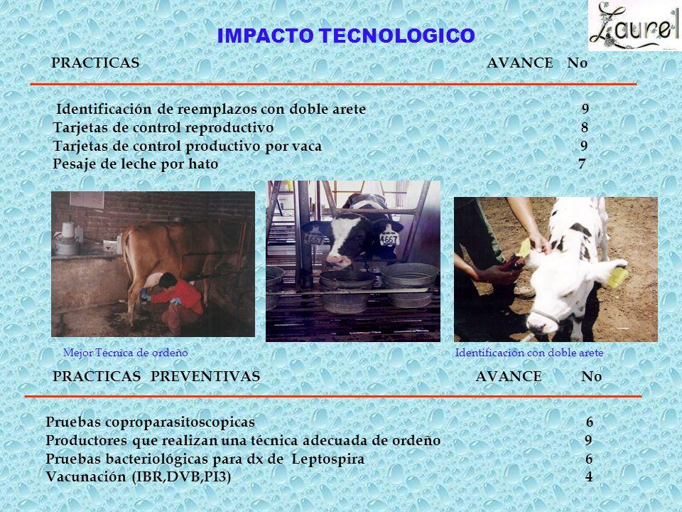 IMPACTO TECNOLOGICO Identificación con doble arete PRACTICAS PREVENTIVAS AVANCE No Pruebas coproparasitoscopicas 6 Productores que realizan una técnica adecuada de ordeño 9 Pruebas bacteriológicas para dx de Leptospira 6 Vacunación (IBR,DVB,PI3) 4 Mejor Técnica de ordeño Identificación de reemplazos con doble arete 9 Tarjetas de control reproductivo 8 Tarjetas de control productivo por vaca 9 Pesaje de leche por hato 7 PRACTICAS AVANCE No