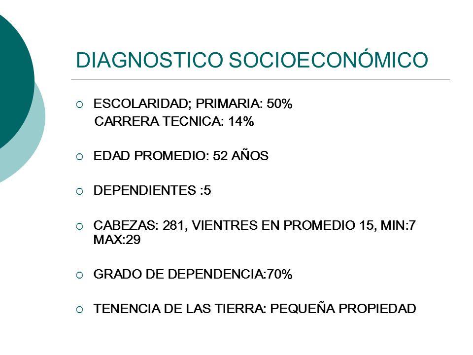 DIAGNOSTICO SOCIOECONÓMICO ESCOLARIDAD; PRIMARIA: 50% CARRERA TECNICA: 14% EDAD PROMEDIO: 52 AÑOS DEPENDIENTES :5 CABEZAS: 281, VIENTRES EN PROMEDIO 1