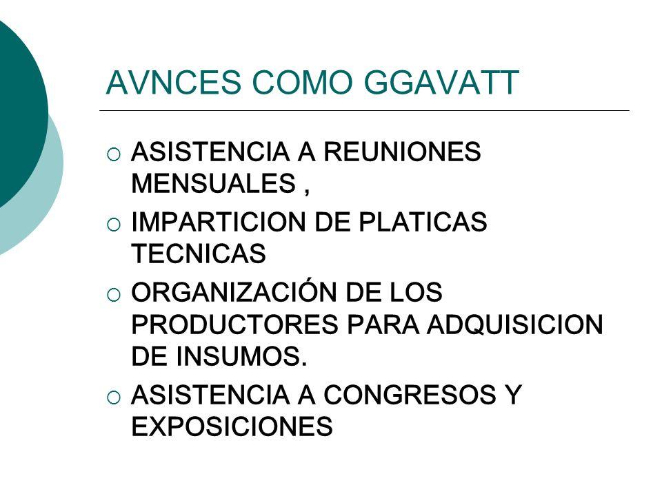 AVNCES COMO GGAVATT ASISTENCIA A REUNIONES MENSUALES, IMPARTICION DE PLATICAS TECNICAS ORGANIZACIÓN DE LOS PRODUCTORES PARA ADQUISICION DE INSUMOS. AS