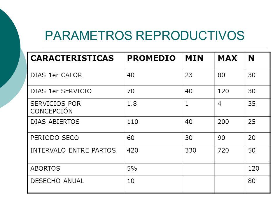 COSTO DE PRODUCCION UPPRECIO DE VENTA $ COSTO UNITARIO $ UTILIDAD /LT $ PRESA DE URIBE 3.32.60.7 EL PROGRESO3.32.70.6 LA PEÑUELA3.32.450.85 SAN ISIDRO3.52.750.25 PROMEDIO3.952.620.75