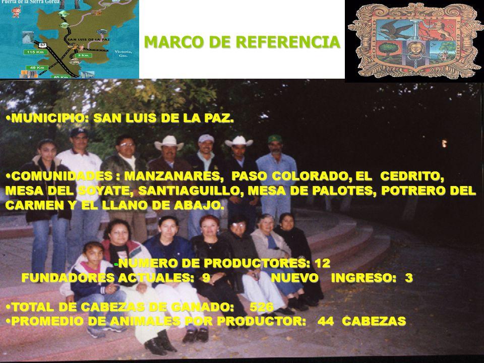 MARCO DE REFERENCIA MUNICIPIO: SAN LUIS DE LA PAZ.MUNICIPIO: SAN LUIS DE LA PAZ. COMUNIDADES : MANZANARES, PASO COLORADO, EL CEDRITO, MESA DEL SOYATE,
