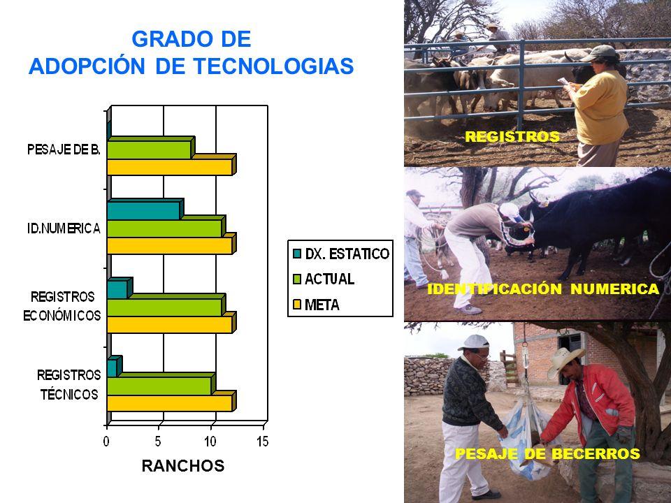 GRADO DE ADOPCIÓN DE TECNOLOGIAS REGISTROS IDENTIFICACIÓN NUMERICA PESAJE DE BECERROS RANCHOS