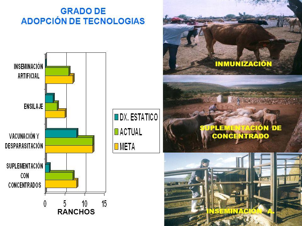 GRADO DE ADOPCIÓN DE TECNOLOGIAS INMUNIZACIÓN SUPLEMENTACIÓN DE CONCENTRADO INSEMINACIÓN A. RANCHOS
