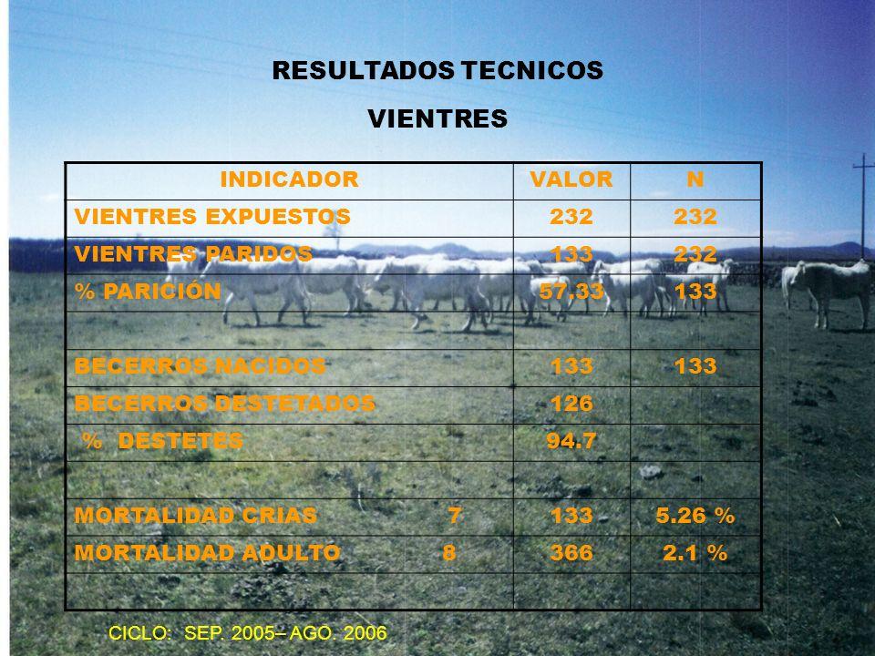 RESULTADOS TECNICOS VIENTRES INDICADORVALORN VIENTRES EXPUESTOS232 VIENTRES PARIDOS133232 % PARICIÓN57.33133 BECERROS NACIDOS133 BECERROS DESTETADOS12