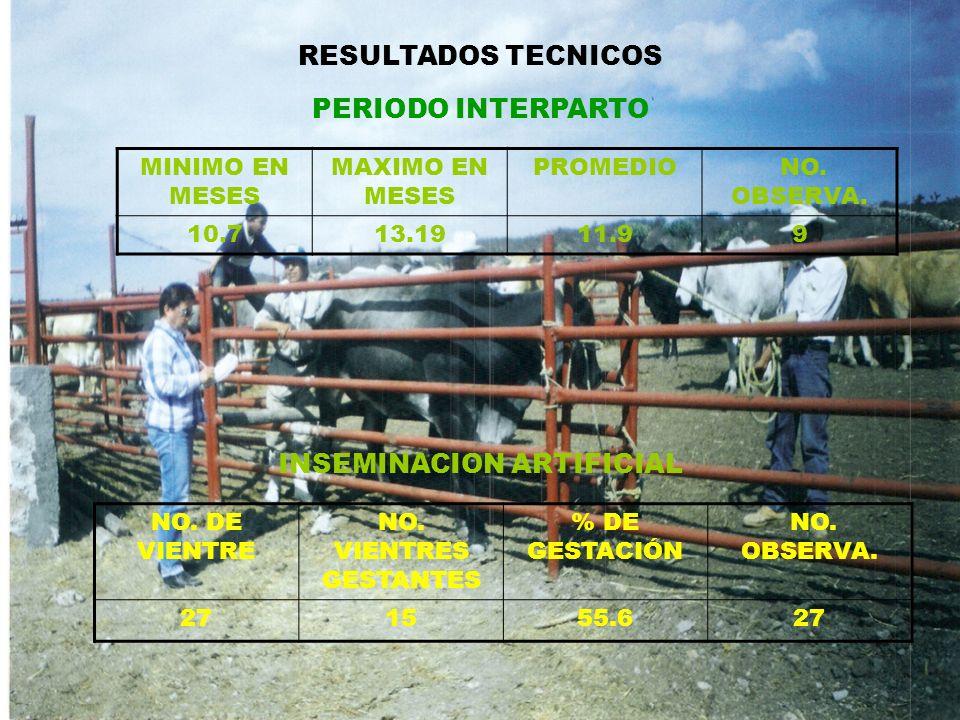 MINIMO EN MESES MAXIMO EN MESES PROMEDIO NO. OBSERVA. 10.713.1911.99 RESULTADOS TECNICOS PERIODO INTERPARTO INSEMINACION ARTIFICIAL NO. DE VIENTRE NO.