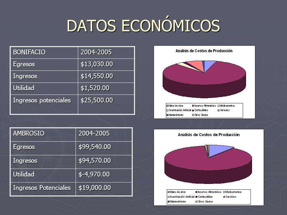 DATOS ECONÓMICOS BONIFACIO2004-2005 Egresos$13,030.00 Ingresos$14,550.00 Utilidad$1,520.00 Ingresos potenciales $25,500.00 AMBROSIO2004-2005Egresos$99