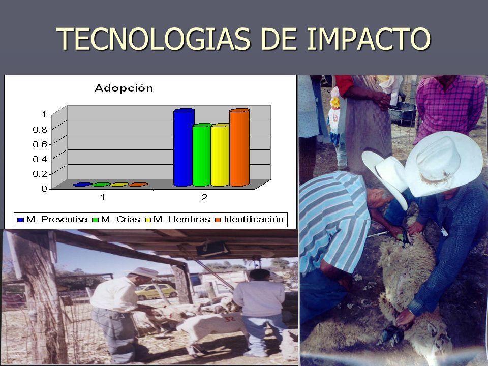TECNOLOGIAS DE IMPACTO