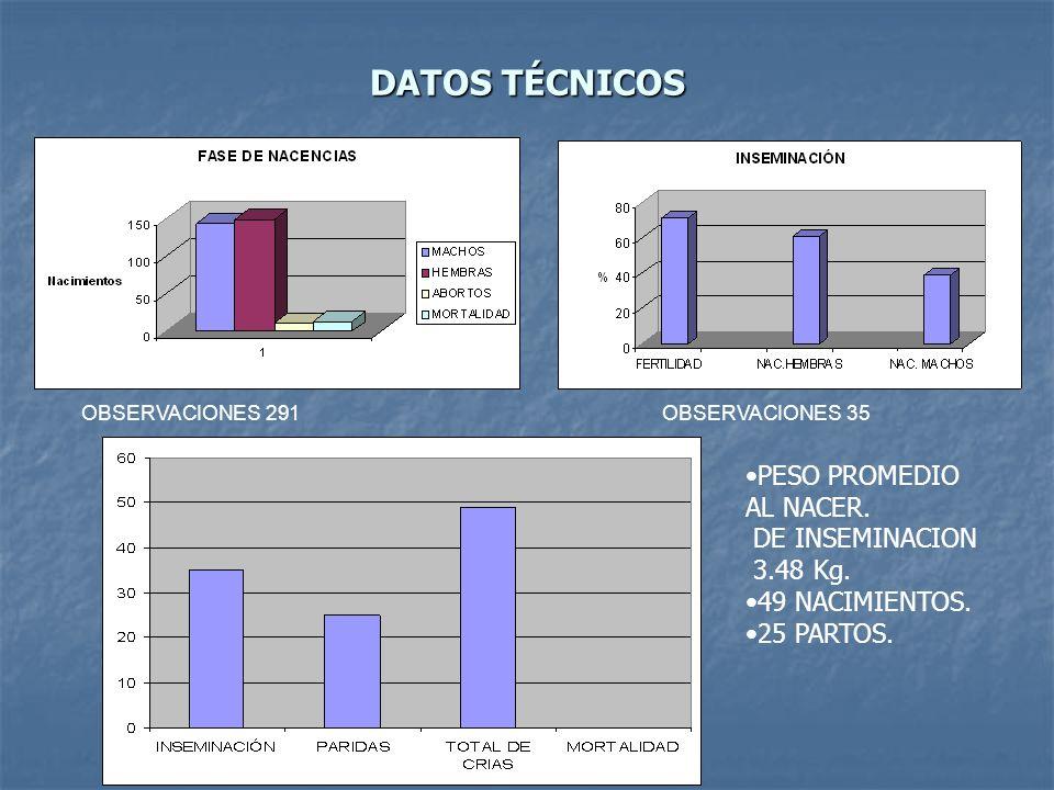 DATOS TÉCNICOS OBSERVACIONES 291OBSERVACIONES 35 PESO PROMEDIO AL NACER. DE INSEMINACION 3.48 Kg. 49 NACIMIENTOS. 25 PARTOS.