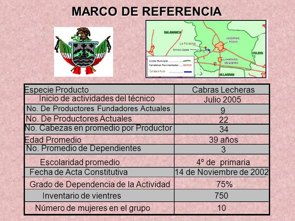 MARCO DE REFERENCIA Especie ProductoCabras Lecheras Inicio de actividades del técnico Julio 2005 No. De Productores Fundadores Actuales 9 No. De Produ