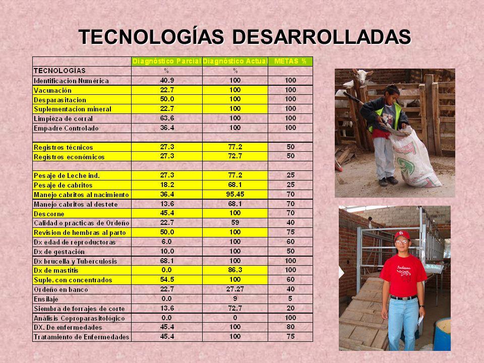 TECNOLOGÍAS DESARROLLADAS TECNOLOGÍAS DESARROLLADAS