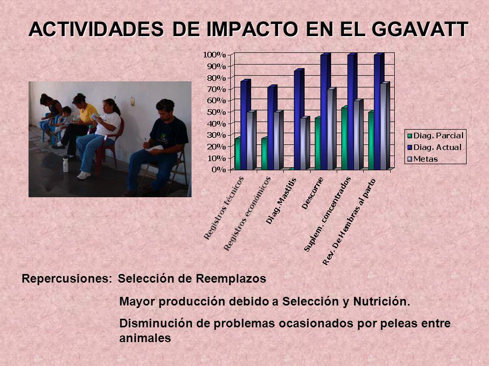 ACTIVIDADES DE IMPACTO EN EL GGAVATT Repercusiones: Selección de Reemplazos Mayor producción debido a Selección y Nutrición. Disminución de problemas