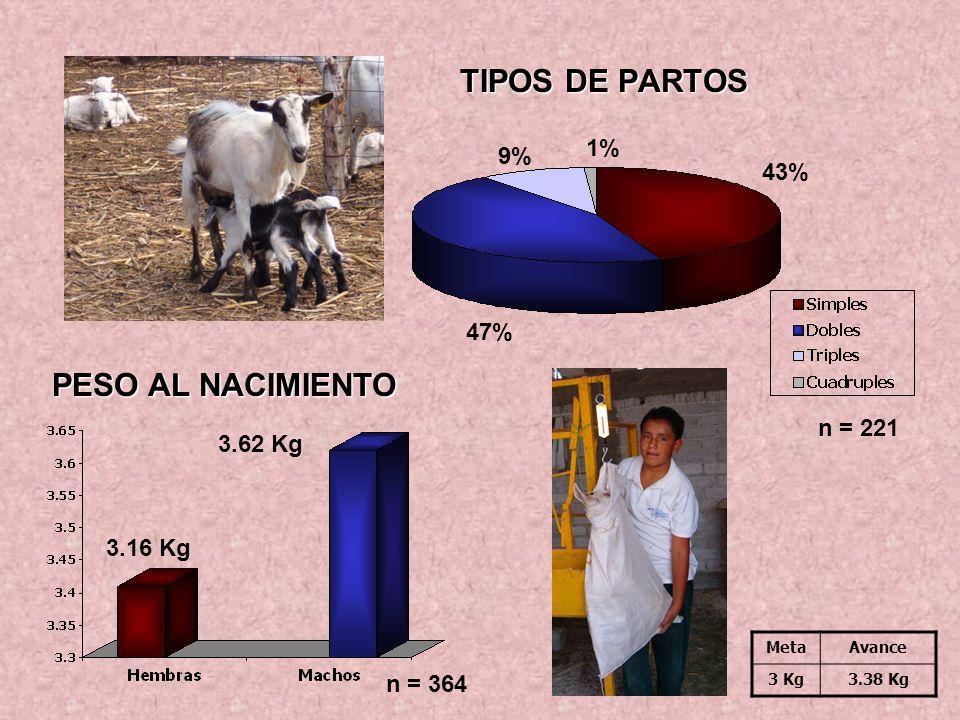 TIPOS DE PARTOS 3.62 Kg 3.16 Kg 47% 1% 9% 43% PESO AL NACIMIENTO n = 364 n = 221 MetaAvance 3 Kg3.38 Kg