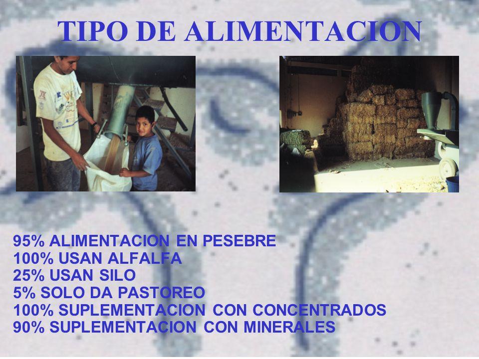 TIPO DE ALIMENTACION 95% ALIMENTACION EN PESEBRE 100% USAN ALFALFA 25% USAN SILO 5% SOLO DA PASTOREO 100% SUPLEMENTACION CON CONCENTRADOS 90% SUPLEMENTACION CON MINERALES
