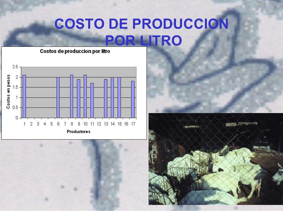 COSTO DE PRODUCCION POR LITRO