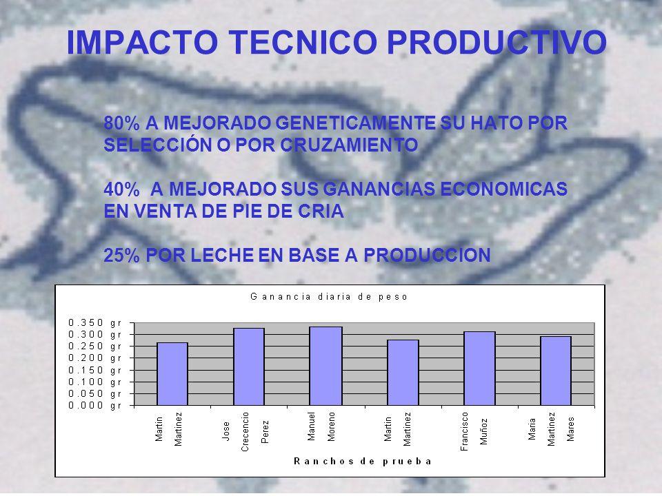 IMPACTO TECNICO PRODUCTIVO 80% A MEJORADO GENETICAMENTE SU HATO POR SELECCIÓN O POR CRUZAMIENTO 40% A MEJORADO SUS GANANCIAS ECONOMICAS EN VENTA DE PIE DE CRIA 25% POR LECHE EN BASE A PRODUCCION