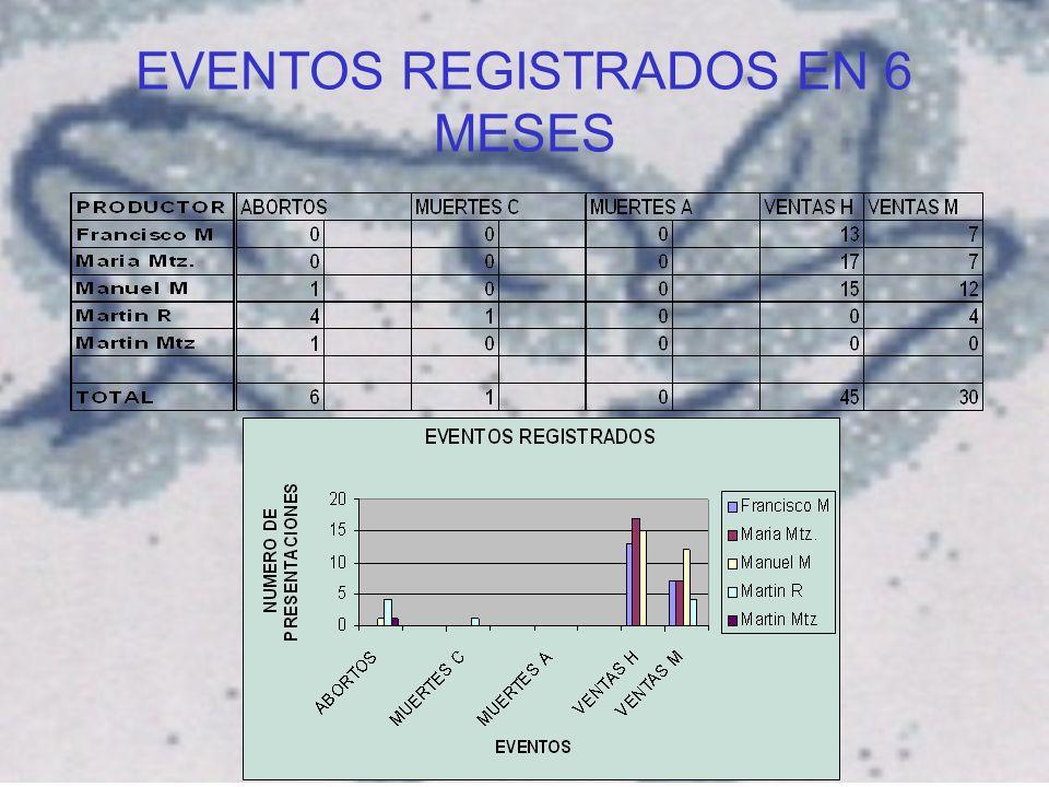 EVENTOS REGISTRADOS EN 6 MESES