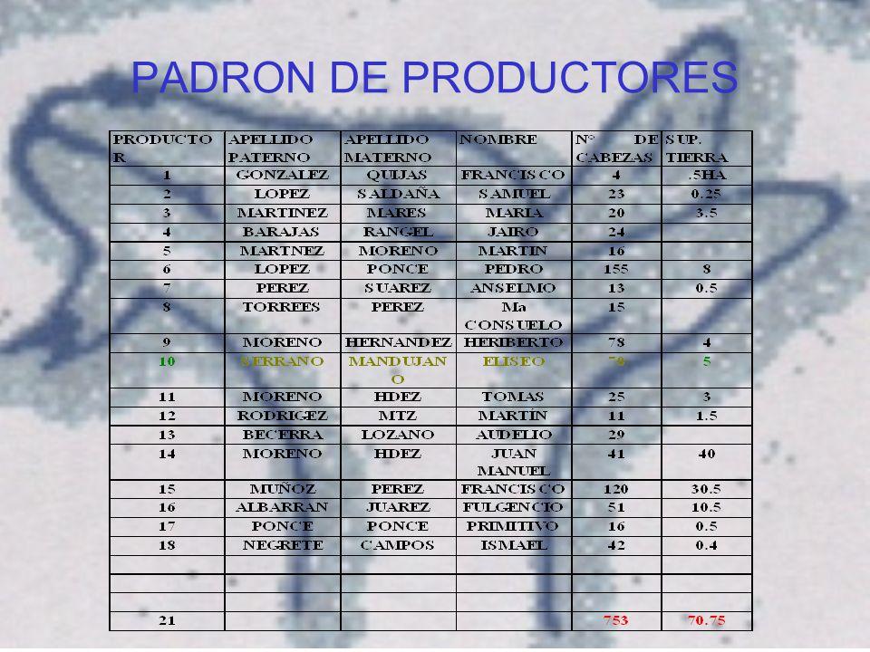 PADRON DE PRODUCTORES