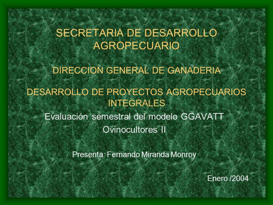 SECRETARIA DE DESARROLLO AGROPECUARIO DIRECCION GENERAL DE GANADERIA DESARROLLO DE PROYECTOS AGROPECUARIOS INTEGRALES Evaluación semestral del modelo GGAVATT Ovinocultores II Presenta: Fernando Miranda Monroy Enero /2004