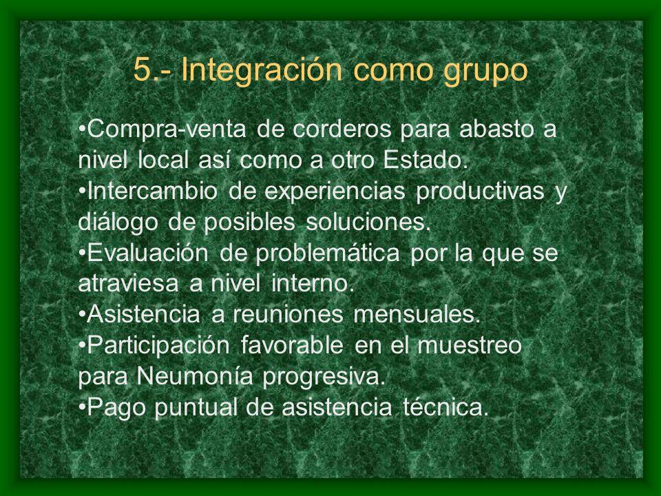 5.- Integración como grupo Compra-venta de corderos para abasto a nivel local así como a otro Estado.
