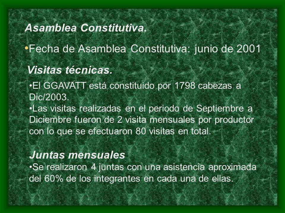 Fecha de Asamblea Constitutiva: junio de 2001 Asamblea Constitutiva.