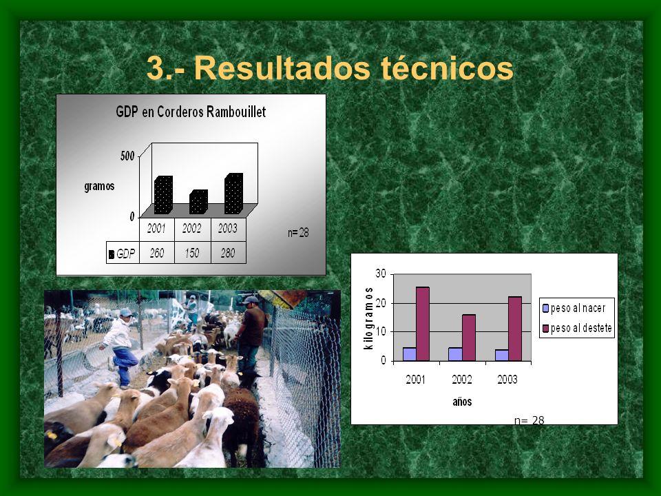 3.- Resultados técnicos n= 28