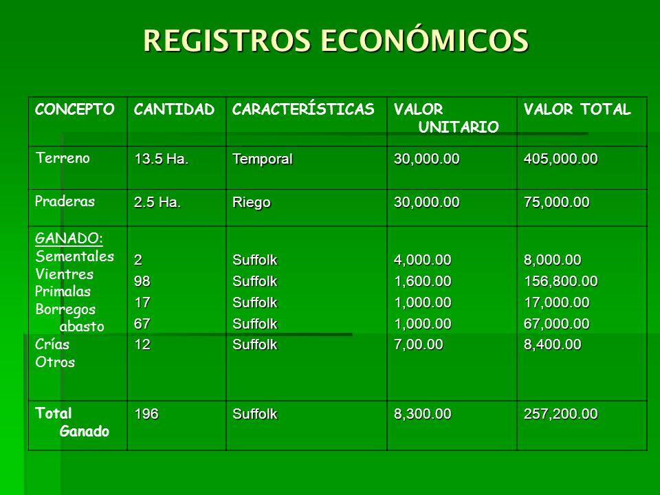 REGISTROS ECONÓMICOS CONCEPTOCANTIDADCARACTERÍSTICASVALOR UNITARIO VALOR TOTAL Terreno 13.5 Ha. Temporal30,000.00405,000.00 Praderas 2.5 Ha. Riego30,0