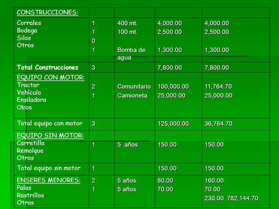CONSTRUCCIONES: Corrales Bodega Silos Otros1101 400 mt. 100 mt. Bomba de agua 4,000.002,500.001,300.004,000.002,500.001,300.00 Total Construcciones37,