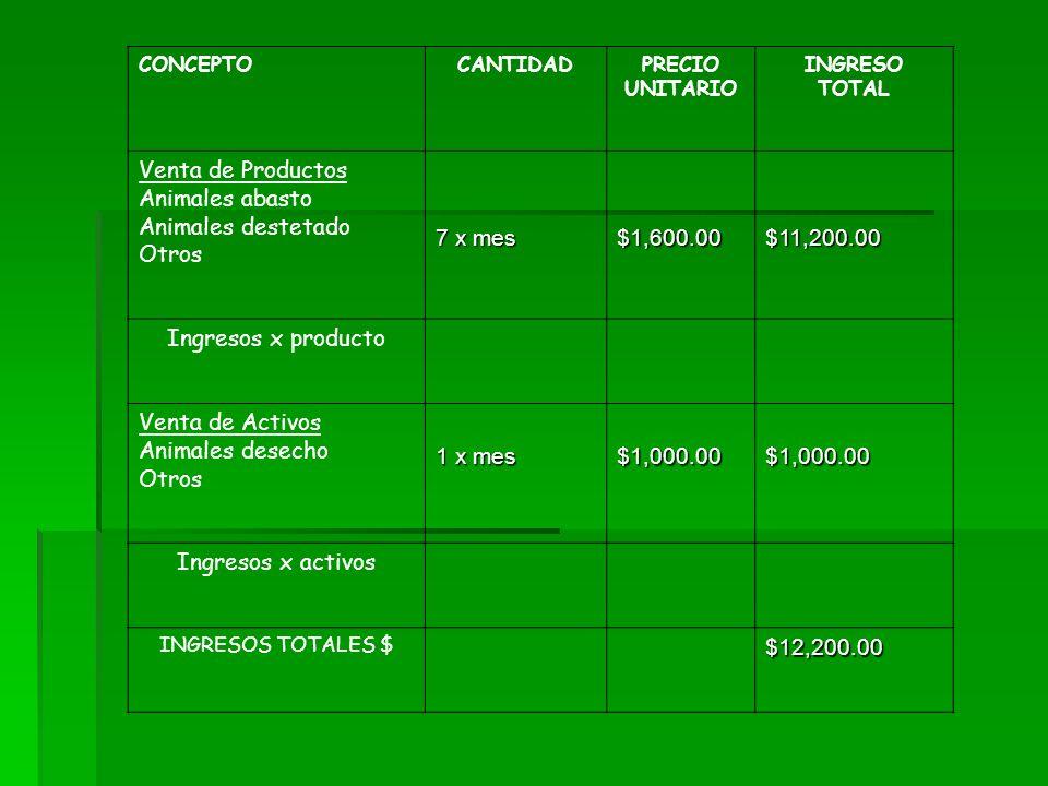 CONCEPTOCANTIDADPRECIO UNITARIO INGRESO TOTAL Venta de Productos Animales abasto Animales destetado Otros 7 x mes $1,600.00$11,200.00 Ingresos x produ