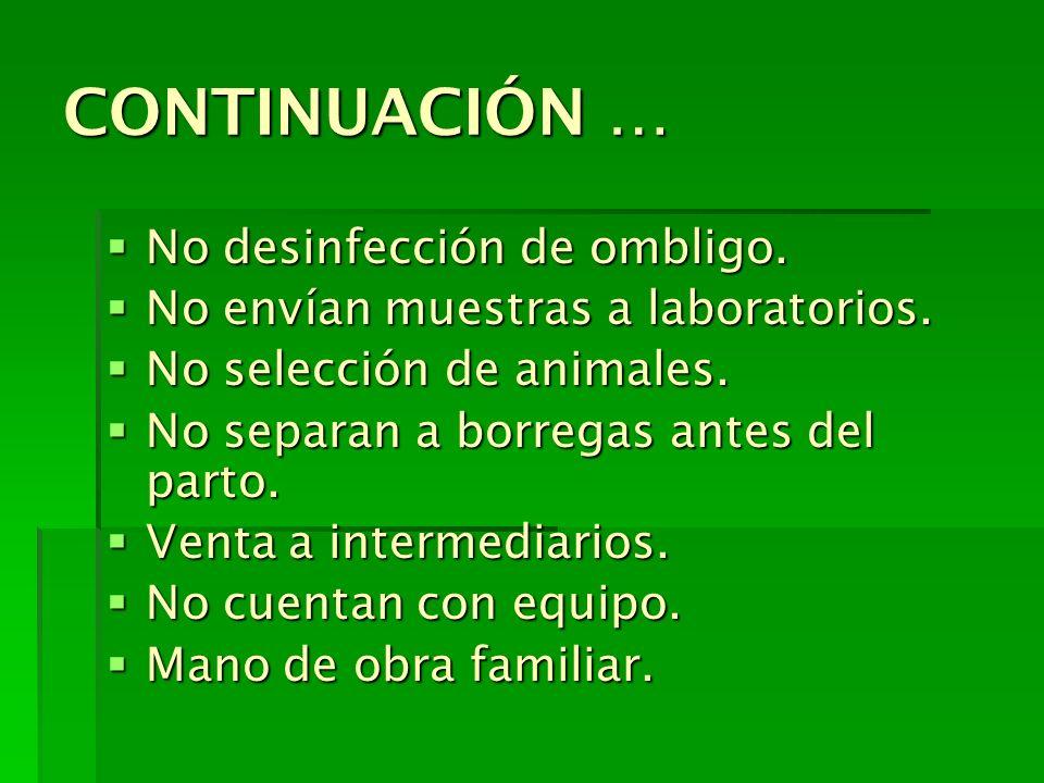 CONTINUACIÓN … No desinfección de ombligo. No desinfección de ombligo. No envían muestras a laboratorios. No envían muestras a laboratorios. No selecc