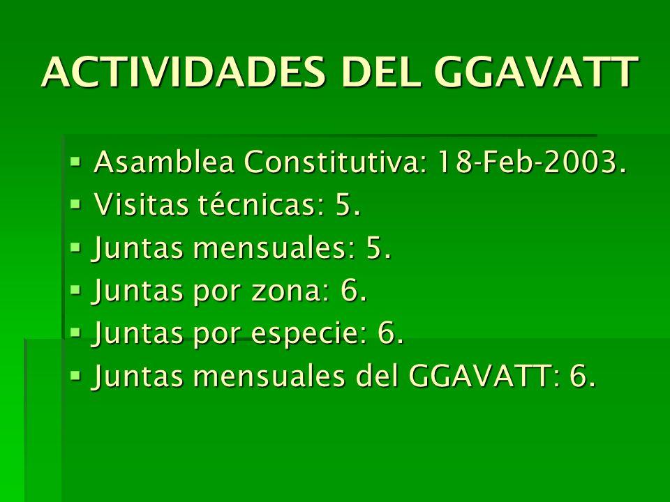 ACTIVIDADES DEL GGAVATT Asamblea Constitutiva: 18-Feb-2003. Asamblea Constitutiva: 18-Feb-2003. Visitas técnicas: 5. Visitas técnicas: 5. Juntas mensu