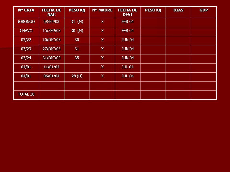 Nº CRIA FECHA DE NAC PESO Kg Nº MADRE FECHA DE DEST PESO Kg DIASGDP JORONGO5/SEP/03 31 (M) X FEB 04 CHAVO15/SEP/03 30 (M) X FEB 04 03/2210/DIC/0330X J