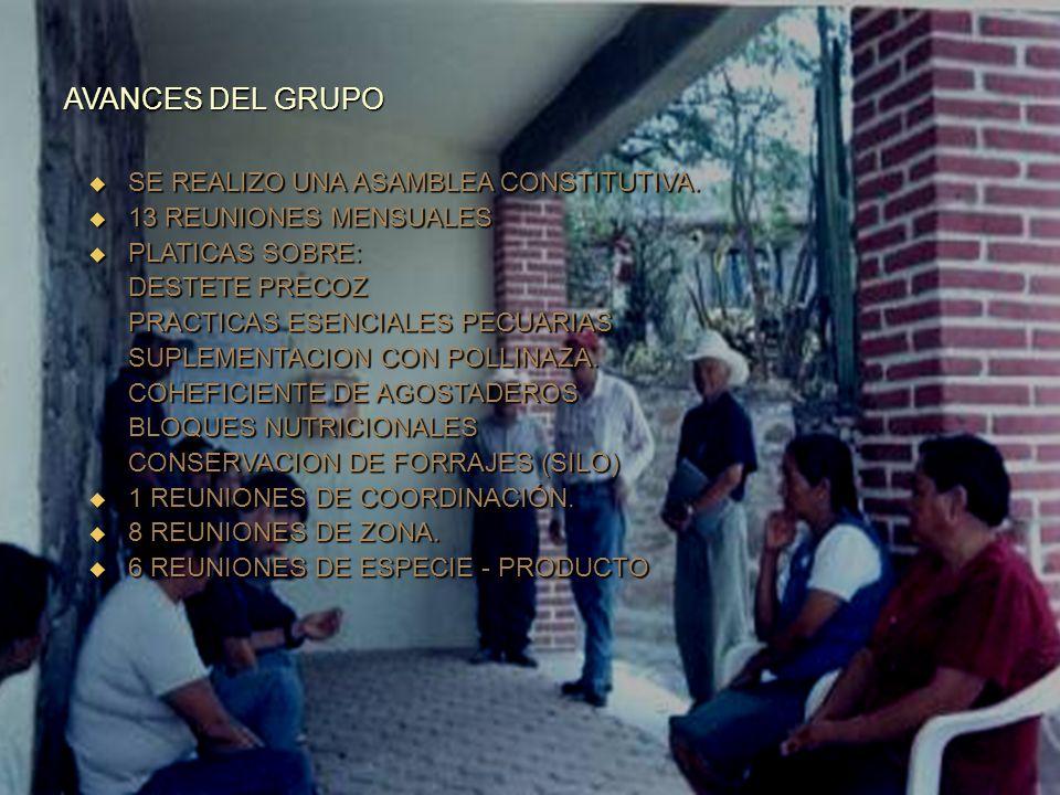 DATOS ECONOMICOS PRODUCTORACTIVOSEGRESOSINGRESOSRBC ROBERTO HERNÁNDEZ BARRERA $ 72,200.00 $ 4,514.00 $ 7,200.00 1.60 EUSTOQUIA GUILLEN ESPINOSA $ 95,9