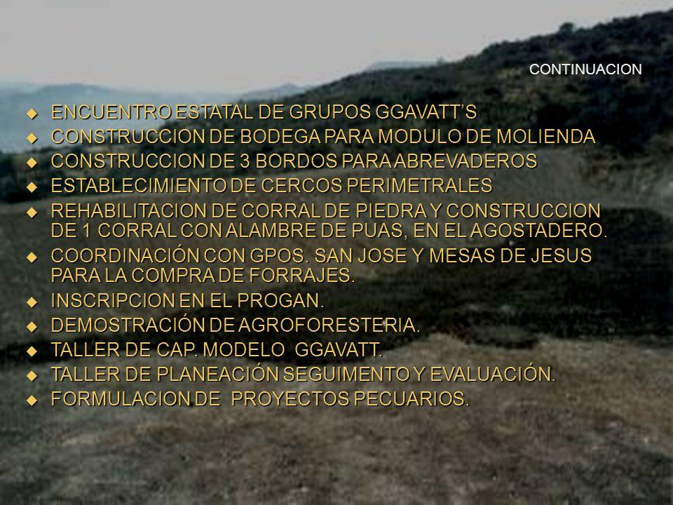 AVANCES DEL GRUPO SE REALIZO UNA ASAMBLEA CONSTITUTIVA. SE REALIZO UNA ASAMBLEA CONSTITUTIVA. 13 REUNIONES MENSUALES 13 REUNIONES MENSUALES PLATICAS S