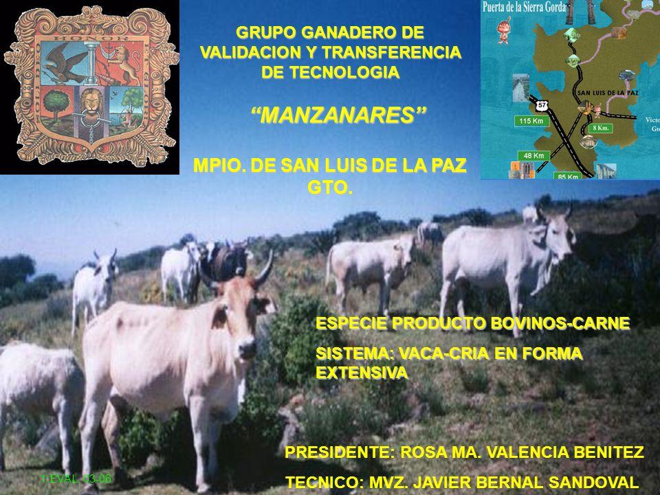 GRUPO GANADERO DE VALIDACION Y TRANSFERENCIA DE TECNOLOGIA MANZANARES MPIO. DE SAN LUIS DE LA PAZ GTO. PRESIDENTE: ROSA MA. VALENCIA BENITEZ TECNICO: