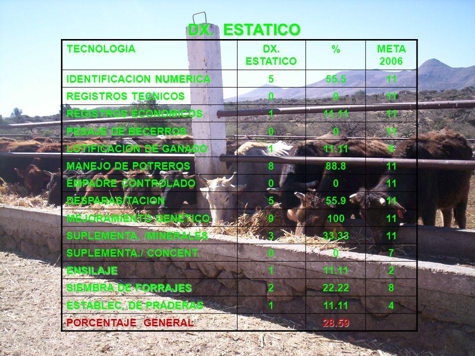 DX. ESTATICO TECNOLOGIADX. ESTATICO %META 2006 NUMERICA IDENTIFICACION NUMERICA555.511 REGISTROS TECNICOS0011 REGISTROS ECONOMICOS111.1111 PESAJE DE B