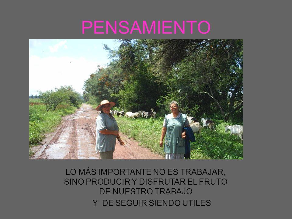 PROYECTO Y METAS AVANCES TOMA DE DATOS EN REGISTROS MEJORAMIENTO GENETICO DISMINUCION DE MORTALIDAD ELABORACIÓN DE DIETAS Y BLOQUES NUTRICIONALES APROVECHAMIENTO DE LOS ESQUILMOS AGRICOLAS.