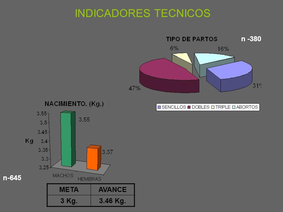 n 645 n INDICADORES TECNICOS METAAVANCE 56.5
