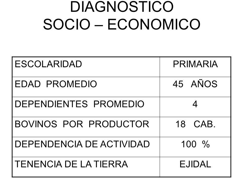 DIAGNOSTICO SOCIO – ECONOMICO ESCOLARIDADPRIMARIA EDAD PROMEDIO45 AÑOS DEPENDIENTES PROMEDIO4 BOVINOS POR PRODUCTOR18 CAB. DEPENDENCIA DE ACTIVIDAD100