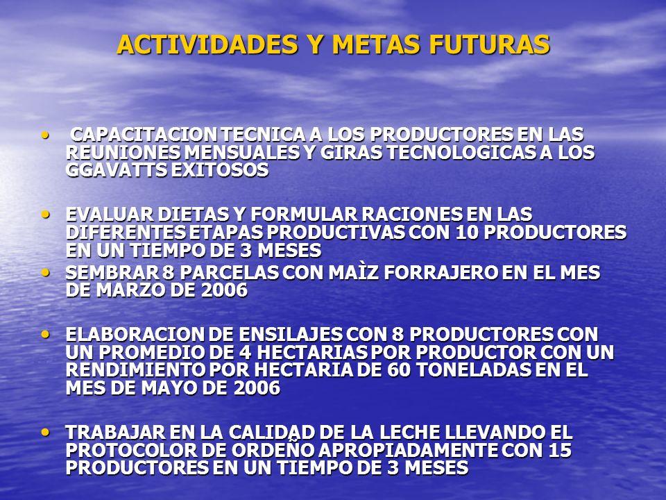 ACTIVIDADES Y METAS FUTURAS CAPACITACION TECNICA A LOS PRODUCTORES EN LAS REUNIONES MENSUALES Y GIRAS TECNOLOGICAS A LOS GGAVATTS EXITOSOS CAPACITACIO