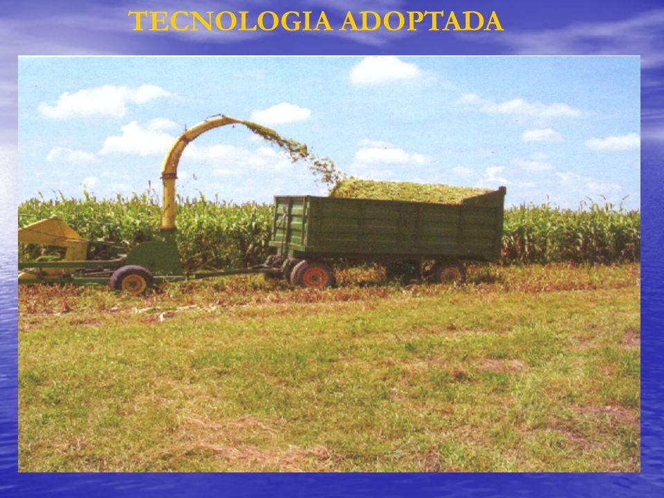 TECNOLOGIA ADOPTADA