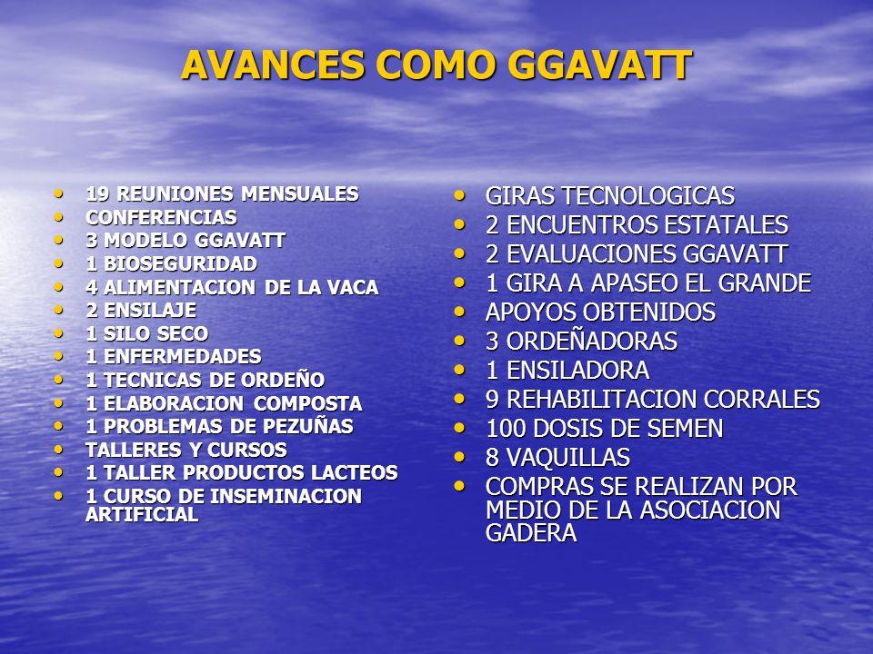AVANCES COMO GGAVATT 19 REUNIONES MENSUALES 19 REUNIONES MENSUALES CONFERENCIAS CONFERENCIAS 3 MODELO GGAVATT 3 MODELO GGAVATT 1 BIOSEGURIDAD 1 BIOSEG
