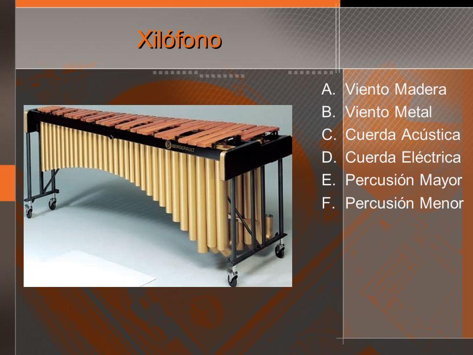 Xilófono A. Viento Madera B. Viento Metal C. Cuerda Acústica D. Cuerda Eléctrica E. Percusión Mayor F. Percusión Menor