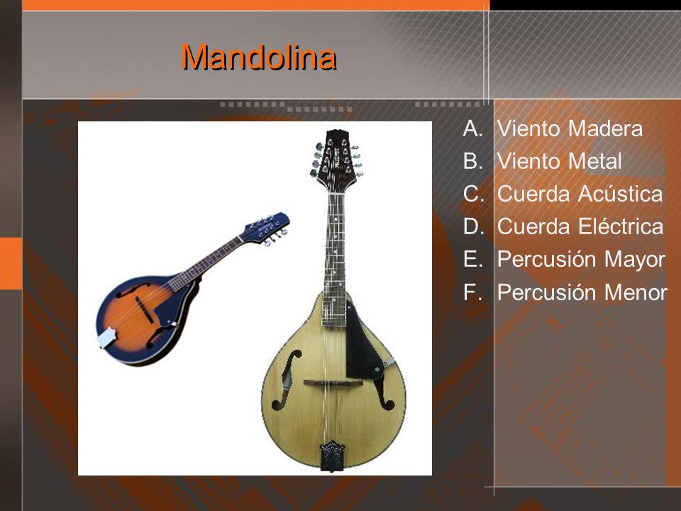 Mandolina A. Viento Madera B. Viento Metal C. Cuerda Acústica D. Cuerda Eléctrica E. Percusión Mayor F. Percusión Menor