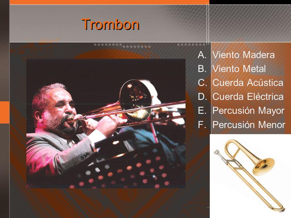 Trombon A. Viento Madera B. Viento Metal C. Cuerda Acústica D. Cuerda Eléctrica E. Percusión Mayor F. Percusión Menor