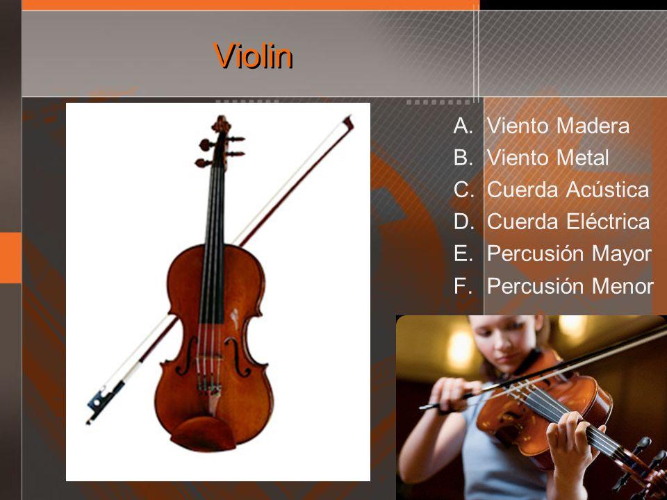 Violin A. Viento Madera B. Viento Metal C. Cuerda Acústica D. Cuerda Eléctrica E. Percusión Mayor F. Percusión Menor