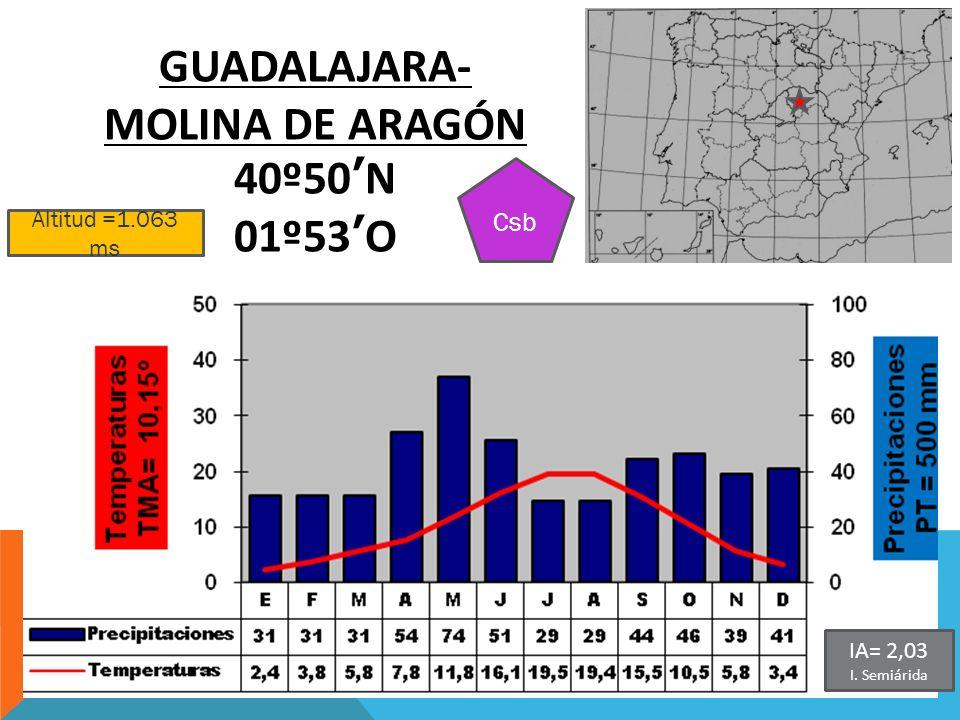 Altitud =1.063 ms GUADALAJARA- MOLINA DE ARAGÓN 40º50N 01º53O Csb IA= 2,03 I. Semiárida